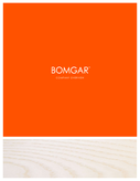 Bomgar Corporation Company Overview