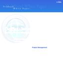 DevPlan - Evolving Project Management Tools